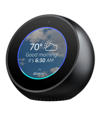Amazon Echo Spot Image